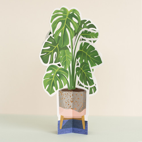 Monstera Paper Plant