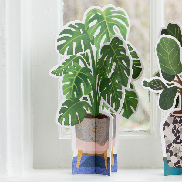 Monstera Paper Plant 2